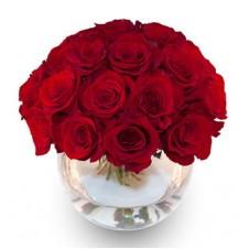 2 dozen of Red Holland Roses in a Globe Vase