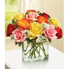 Assorted Holland Roses w/ Baby's Breath in a Vase
