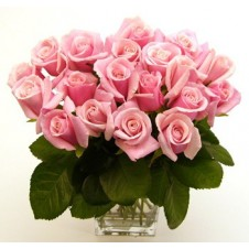 24pcs Pink Holland Roses in a Cube Vase