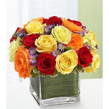 2dozen Assorted Holland Roses in a Cube Vase