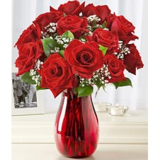 One dozen Red Holland Roses w/ Baby's Breath in a Vase