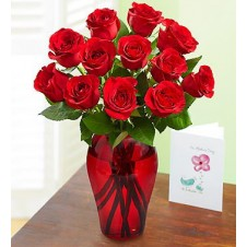 One dozen Red Holland Roses in a Vase