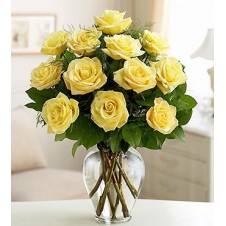 One dozen Yellow Holland Roses in a Vase