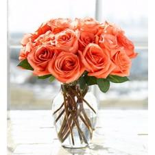 One dozen Orange Holland Roses in a Vase