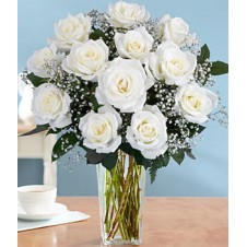 Holland White Roses w/ Babys Breath in a Vase