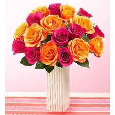 3 dozen Assorted Holland Roses in a Vase