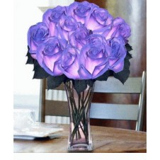 12 pcs. Imported Holland Blue Roses 2 in a Vase