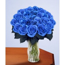 36 pcs. Imported Holland Blue Roses* in a Vase