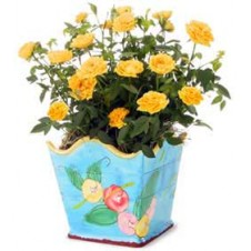 A beautiful Rose Blooms in this Planter Decorated with Blossoms in a Vase