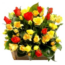2 dozen Yellow Roses & 1 dozen Roses in a Basket