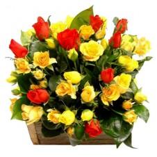 2 dozen Yellow Roses & 1 dozen Roses in a Basket