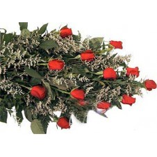 One dozen Red Wrapped Roses with Added Baby's Breath