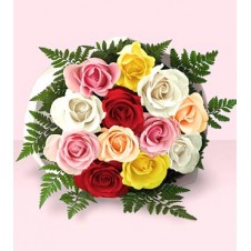 One Dozen Multi Colored Roses in a Bouquet with Filler