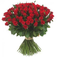 101 pcs Long Stemmed Fresh Cut Deep Red Roses in a Box