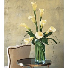 8 pcs Calla Lilies in a Vase