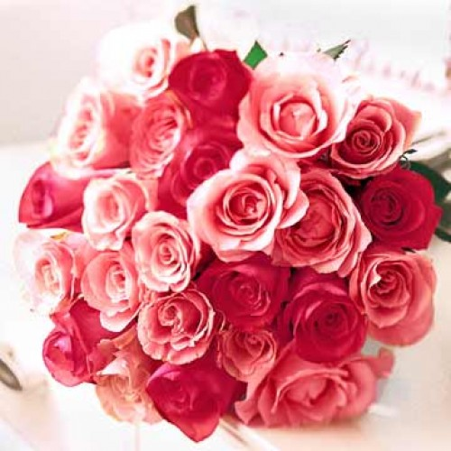 2 dozen Red & Pink Roses Mix in a Buoquet