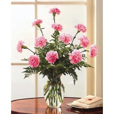 10 pcs Pink Carnations in a Vase