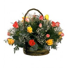 2 dozen Multicolored Roses with Baby's Breath in a Basket