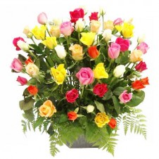 4 dozen Multicolored Roses in a Basket