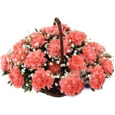 1 dozen Carnations in a Basket
