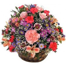 Rounded arrangement in a Basket 1
