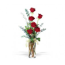 6 Red Roses in a Vase