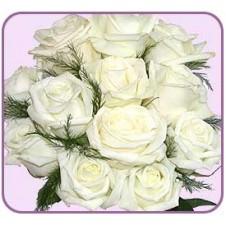 One dozen White Roses in a Bouquet 1