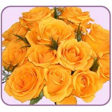 1 dozen Yellow Roses in Bouquet