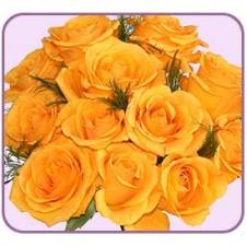 1 dozen Yellow Roses in Bouquet