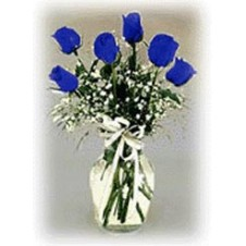 1 Dozen Blue Roses in a Vase