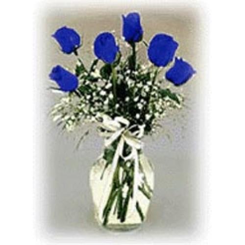 1 Dozen Blue Roses in a Vase