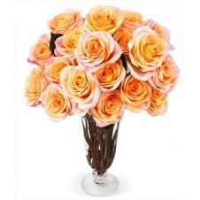 1 Dozen Orange Roses