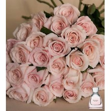 2 dozen Peach Roses in a Bouquet*