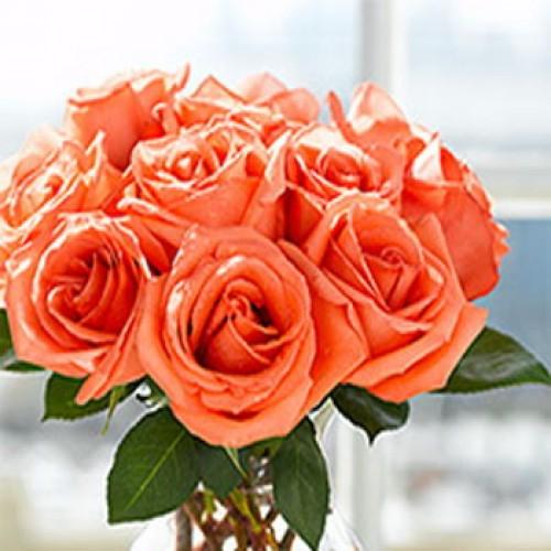 1 Dozen Orange Roses in a Bouquet