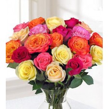 2 dozen Multicolored Roses in a Vase