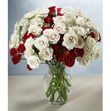 Red and White Roses in a Vase
