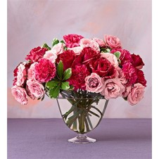 Pink and Red Carnations in a Glass Vase