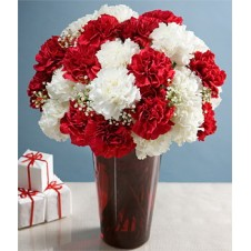 White and Red Carnations in a Vase