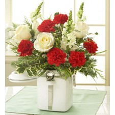 6pcs Carnations with White Roses in a Vase