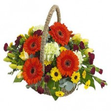Pretty Basket of Mixed Flowers