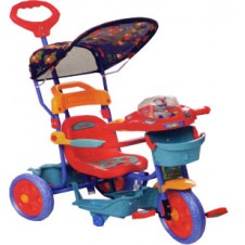 Family Trike with Canopy