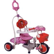 Dora Trike with Push Handle