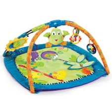 Bright Starts Bouncer and Play Mat Backyard Play Gym
