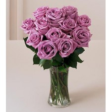 1 Dozen Imported Holland Purple Roses* in a Vase