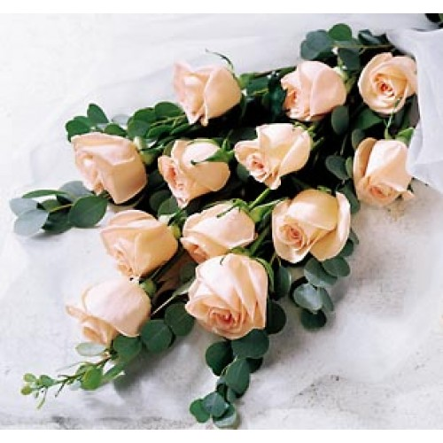 1 Dozen Peach Roses in a Nice Bouquet