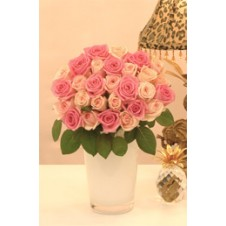 Promo Light Pink Peach in a Bouquet