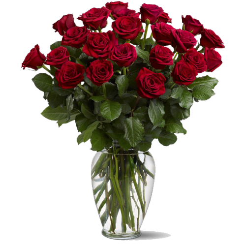 2 dozen red roses in a vase - Decorer un vase transparent ...