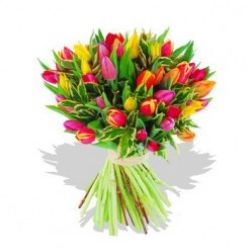 One Dozen Assorted Tulips in a Bouquet