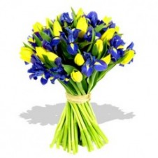 Mixed Iris & Tulips in a Bouquet