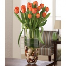 Two Dozen Orange Tulips in a Vase